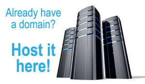 Professional Website Hosting